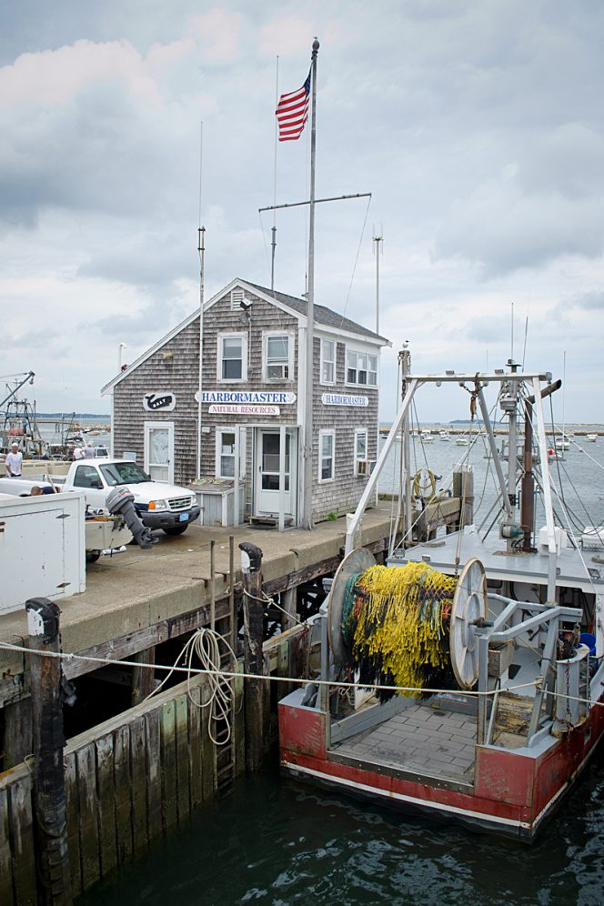 Harbormaster Plymouth